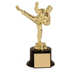 MA06 Martial Arts Trophy